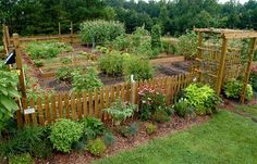 Garden fence idea (article linked is not related - pinned for photo only).
