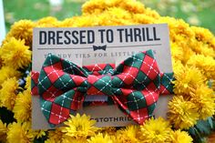 Red & Green Argyle Christmas Adjustable Baby/Toddler Bow Tie. $15.00, via Etsy.