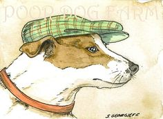 A Jack Russell  with a hat