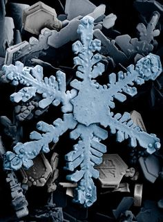 Snowflakes under an electron microscope. Like a giant sculpture made of playdough.