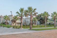 Gallery of Swissotel Resort Bodrum Beach / GAD & Gokhan Avcioglu - 19