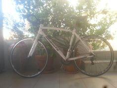 #bike Bianci camaleonte sport custom