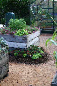 Aussie vege garden - Melbourne International Flower & Garden Show
