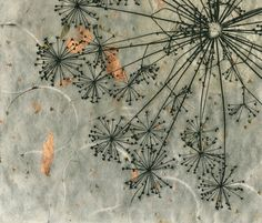 Dill Weed Seed Head Print by 88editions on Etsy #semillas #marihuana #weed…
