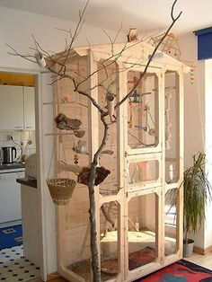 Beautiful bird cage ideas 31 - Interior Home Decor, The bird cage is both a property for your birds and a decorative tool. You can select anything you need one of the bird cage designs and get a great deal more specific images. Bird Cage Design, Diy Bird Cage, Bird Cages, Bird Cage Stand, Cockatiel, Budgies, Parrots, Parakeet Cage, Bird House Kits