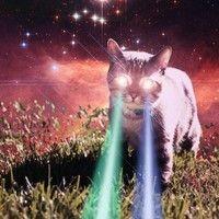 LaserCat by BIRNABEATZ on SoundCloud