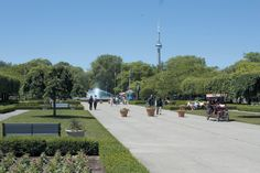 Toronto Island - a beautiful waterfront picnic park made up of several islands with various tourist features