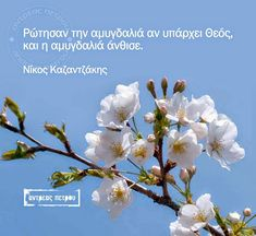 Greek Quotes, Book Quotes, Wise Words, Christianity, Philosophy, Meant To Be, Literature, Poems, Wisdom