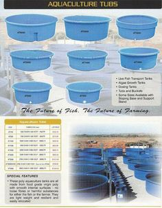 Have you heard of aquaponics? Aquaponics Combines the Growing of Fish and Plants You may grow plants in water and without soil and once one does this together with growing fish you are practicing aquaponics. Aquaponics Greenhouse, Aquaponics Plants, Aquaponics System, Hydroponic Gardening, Organic Gardening, Container Gardening, Homemade Hydroponics, Aeroponic System, Aquaponics Supplies