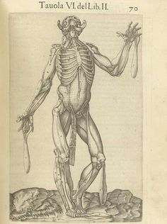 Page 70 of Juan Valverde de Amusco's Anatomia del corpo humano, 1560 featuring a flayed cadaver with its head tilted back and flaps of muscle in the face, arms, hands and legs fanned away to reveal muscles underneath them. From the collection of the National Library of Medicine. Visit: http://www.nlm.nih.gov/exhibition/historicalanatomies/valverde_home.html