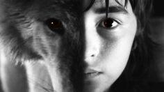 . Dessin Game Of Thrones, Game Of Thrones Tv, Images Wallpaper, Animal Wallpaper, Game Of Thrones Direwolves, Bran Stark, Sansa Stark, Isaac Hempstead Wright, Man Beast