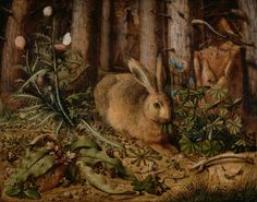 A Hare in the Forest, about 1585, Hans Hoffmann.