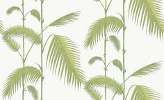 Buy Cole & Son 95/1009 Palm Wallpaper | Contemporary Restyled | Fashion Interiors