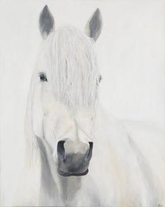 Buy Grey On White, a Acrylic on Canvas by Star King from United Kingdom. It portrays: Animal, relevant to: portrait, white, contemporary, equestrian, equine, grey, horse Human civilization lost something special when we lost our proximity to horses. We lost part of ourselves, because our dignity, strength, and courage is inspired by and intertwined with the dignity, strength, and courage of the horse. I paint larger-than-life horse portraits to help reclaim part of that proximity. I hope…