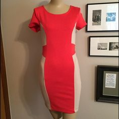 Two Tone Dress Form fitting Forever 21 dress. Great condition, like new. Only worn once. True to size. Forever 21 Dresses