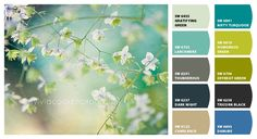 Instantly turn any picture into a palette with ColorSnap, created for you by Sherwin-Williams. Soothing Colors, Dark Night, Dream Bedroom, Color Palettes, Home Projects, Color Combinations, Paint Colors, Bedrooms, House Ideas