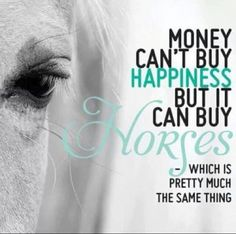 Haha money CAN buy happiness... Cuz it can buy horses!!! And Horses are Happiness to me. Without Horse riding I'd be sad not being close to such a pretty, elegant creature!