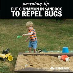 Cinnamon in the sandbox to repel bugs! Im so trying this! Wonder if it really works?!