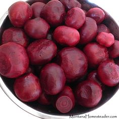 How to make and can pickled beets with apple cider vinegar and honey Montana Homesteader