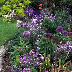 lovely purple Spring garden