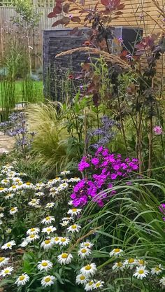 Designing gardens across London, Surrey and Middlesex. Book for free Richmond consultation with Scott Lawrence here. Surrey, Landscape Architecture, Planting, Perennials, Garden Design, London, Beautiful, Plants, Landscape Designs