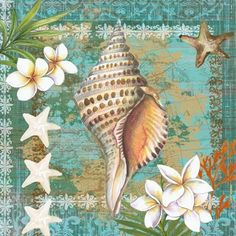 Shells and Plumeria 3 by Elena Vladykina   Ruth Levison Design