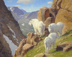 Mountain goat painting by Ralph Oberg