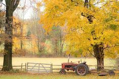 autumn tractor orange fall rust red yellow golden leaves