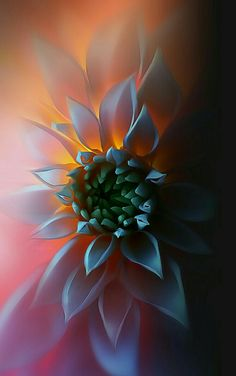 Hd Love Couple Wallpapers For Android Mobile Background Wallpapers Sunflower Wallpaper, Apple Wallpaper, Colorful Wallpaper, Wallpaper Backgrounds, Beautiful Flowers Wallpapers, Cute Wallpapers, Iphone Wallpapers, Flower Art Images, Love Couple Wallpaper