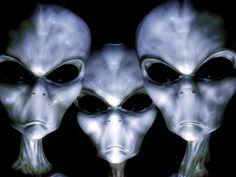 32 Best Zeta Reticuli images in 2017   Universe, Aliens, Ancient aliens