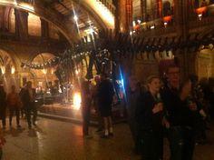 Twitter / Turner_MarkC: @NHM_London looks amazing at ...