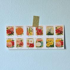 usps vintage seed packet stamps, 2013.