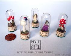 Miniature Fairy / Faerie Cottage Specimen Under Glass - No. 020.12 - Very Important and Official. $23.00, via Etsy.
