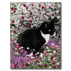 Freckles in Flowers II - Tuxedo Kitty Cat Postcard #sold going to the UK!!  #cat