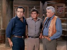 Ben, Adam and Joe Cartwright (Bonanza)