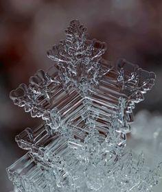 snow crystal...