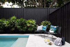 If you are working with the best backyard pool landscaping ideas there are lot of choices. You need to look into your budget for backyard landscaping ideas Backyard Pool Landscaping, Pool Fence, Swimming Pools Backyard, Backyard Fences, Swimming Pool Designs, Landscaping Ideas, Fence Around Pool, Landscaping Along Fence, Acreage Landscaping