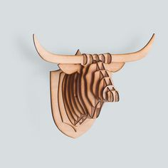 Toro mini
