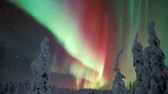 Полярная лиса зажигает волшебные искры? Финская версия северного сияния. #Finland #aurora