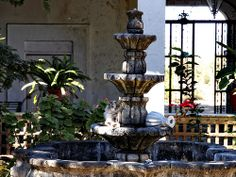 The Courtyard..... Cat sunbathing in Fountain...