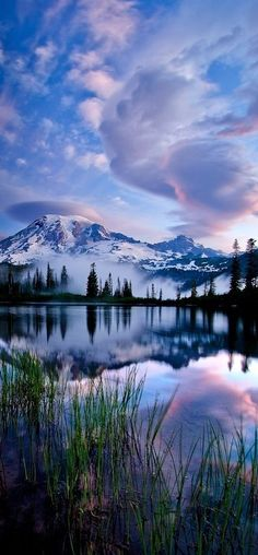 """Beautiful Places/ Rainier National Park, Washington """"In every walk with nature one receives far more than he seeks. All Nature, Amazing Nature, Cool Photos, Beautiful Pictures, Beautiful Nature Images, Nature Photos, Amazing Photos, Beautiful Nature Photography, Amazing Photography"""