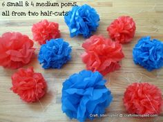 Pom poms from plastic table cover from dollar store.  Hold up in rain and don't crush like tissue paper!