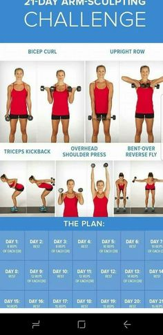 Arm Workout Challenge for Women to Lose Arm Fat If you're wondering how to lose arm fat fast?, give this 30 day arm workout challenge a go. Your arms are an important part of your body. In fact, there is no…Read more → Body Fitness, Fitness Diet, Health Fitness, Workout Fitness, Arm Day Workout, Free Weight Arm Workout, Mens Fitness, Arm Workout Women With Weights, Arm Exercises With Weights
