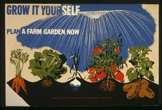Herbert Bayer - Grow it yourself - Plan a farm garden now fine art preproduction . Explore our collection of Herbert Bayer fine art prints, giclees, posters and hand crafted canvas products Wpa Posters, Poster Prints, Art Prints, Food Posters, Protest Posters, Concert Posters, Vintage Posters, Vintage Art, Vintage Images