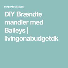 DIY Brændte mandler med Baileys | livingonabudgetdk