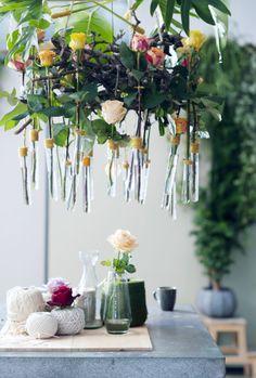 Roos, rozen, rose, bloemen, flowers.