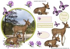 2 little deers in forest on Craftsuprint - Add To Basket!