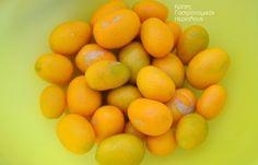 Τα ξινόδεντρα ανέκαθεν ήταν από τα αγαπημένα δέντρα των κρητικών. Σε κάθε αυλή με κήπο, σε κάθε περβόλι θα υπάρχουν οπωσδήποτε λεμονιές και πορτοκαλιές ! Μόνο τα κουμ κουάτ έλειπαν μέχρι πριν λίγα χρόνια από την τεράστια ποικιλία των εσπεριδοειδών μας. Τελευταία όμως τα βλέπω ακόμη και σε … Orange, Fruit, Food, Essen, Yemek, Meals
