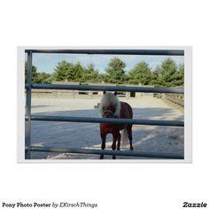 Pony Photo Poster