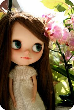 Such prettyness by Little-Kate, via Flickr